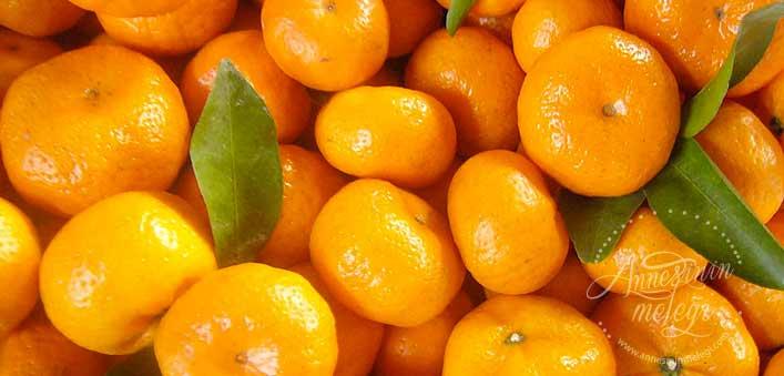 Limon kesilince vitamini gider mi? Mandalina ve Portakalın Beyaz Kısmı da Yenmeli. blender sebzelerin vitaminini öldürür mü blender besin değerini öldürür mü salata yaparken bitkilerin bıçakla doğranması yerine elle koparılmasının nedeni hangi durumlarda gıdaların besin değeri azalır blender zararlımı bebek blender bebeklerde blender kullanımı limon kesilince vitamini gider mi