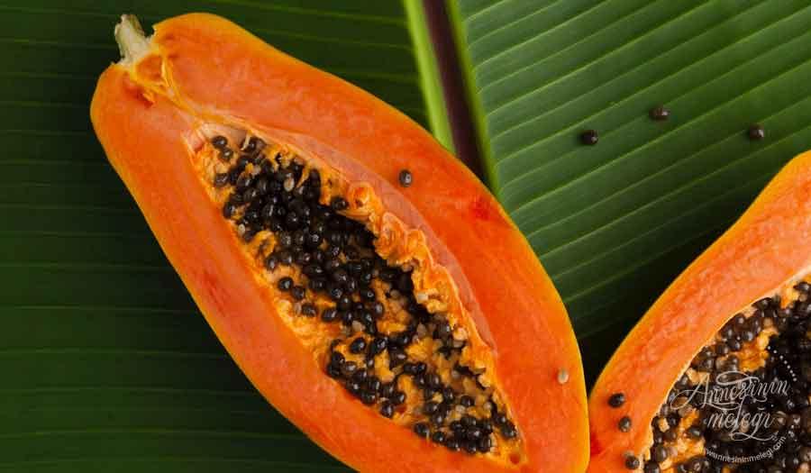Papaya meyvesi | Papaya nedir? Papaya nasıl yenir? Papayanın faydaları ve Papaya nasıl kurutulur papaya papaya slim ekşi papaya suyu papaya meyve papaya çekirdeği papaya meyvesi nedir papaya meyvesi papaya ne zaman meyve verir papaya meyvesi türkiyede nerede yetişir papaya türkiyede nerede yetişir papaya ağacı papaya meyvesi nasıl yenir papaya meyvesinin faydaları papaya meyvesi faydaları papaya yetiştiriciliği papaya nedir papaya ne işe yarar