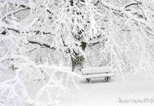 Eğlenceli Gerçekler: Kar neden yağar? kar nasıl oluşur? Çocuklarımız için eğlenceli gerçekler: Kar neden yağar, kar nasıl oluşur,bunları biliyor musunuz,kar nasıl olur, kar neden yağar, kar oluşumu,kar mevsimi,kar nasıl oluşur, bunları biliyor musunuz?