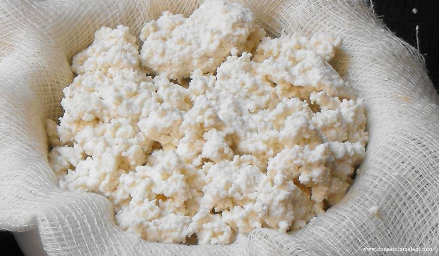 Ev Yapımı Peynir: Ricotta (Taze Lor) Tarifi