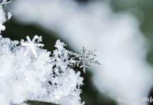 Bunları biliyor musunuz? Hiçbir kar tanesi bir diğerine benzemez...Her bir kar kristali eşsizdir, tektir