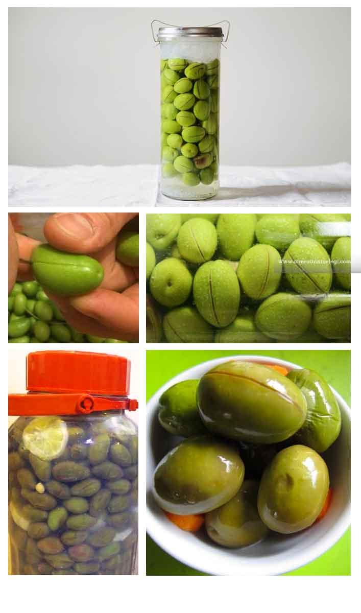 Adım Adım resimli evde yeşil zeytin nasıl yapılır? Ev yapımı yeşil zeytin tarifi nasıl yapılır? yeşil zeytin yapmak,ham zeytin tatlandırmak,yaş zeytin yapımı,yeşil zeytin tarifi,yeşil zeytin,yeşil çizik zeytin,yeşil kırma zeytin,organik zeytin,ev yapımı yeşil zeytin. yeşil zeytin yapımı,kırma yeşil zeytin nasıl yapılır yeşil zeytin yapımı oktay usta zeytin yapımı tarifi yeşil zeytinin kararmaması için ne yapılır yeşil zeytin nasıl saklanır yeşil zeytin faydaları siyah zeytin nasıl yapılır yeşil zeytin kurma yöntemleri. ev yapımı kırma yeşil zeytin ev yapımı yeşil zeytin ev yapımı yeşil zeytin ezmesi ev yapımı yeşil zeytin fiyatı ev yapımı yeşil zeytin nasıl saklanır ev yapımı yeşil zeytin tarifi ev yapımı çizik yeşil zeytin evde kolay yeşil zeytin yapımı evde kırma yeşil zeytin evde kırma yeşil zeytin nasıl yapılır evde kırma yeşil zeytin yapımı evde kırma yeşil zeytin yapımı uzman tv evde salamura yeşil zeytin yapımı evde sofralık yeşil zeytin yapımı evde yeşil kırma zeytin nasıl yapılır evde yeşil zeytin ezmesi evde yeşil zeytin ezmesi nasıl yapılır evde yeşil zeytin ezmesi yapımı evde yeşil zeytin hazırlama evde yeşil zeytin kurma evde yeşil zeytin kurmak evde yeşil zeytin nasıl kurulur evde yeşil zeytin nasıl saklanır evde yeşil zeytin nasıl salamura yapılır evde yeşil zeytin nasıl tatlandırılır evde yeşil zeytin nasıl yapılır evde yeşil zeytin nasıl yapılır video evde yeşil zeytin salamurası evde yeşil zeytin salamurası nasıl yapılır evde yeşil zeytin tatlandırma evde yeşil zeytin yapmanın püf noktaları evde yeşil zeytin yapımı evde yeşil zeytin yapımı nasıl olur evde yeşil zeytin yapımı oktay usta evde yeşil zeytin yapımı tarifi evde yeşil zeytin yapımı uzman tv evde yeşil zeytin yapımı video evde yeşil çizik zeytin nasıl yapılır evde yeşil çizik zeytin yapımı evde yeşil çizme zeytin nasıl yapılır evde çizik yeşil zeytin evde çizik yeşil zeytin yapımı evde çizme yeşil zeytin evde yeşil zeytin ezmesi nasıl yapılır evde yeşil zeytin nasıl kurulur evde yeşil zeyt