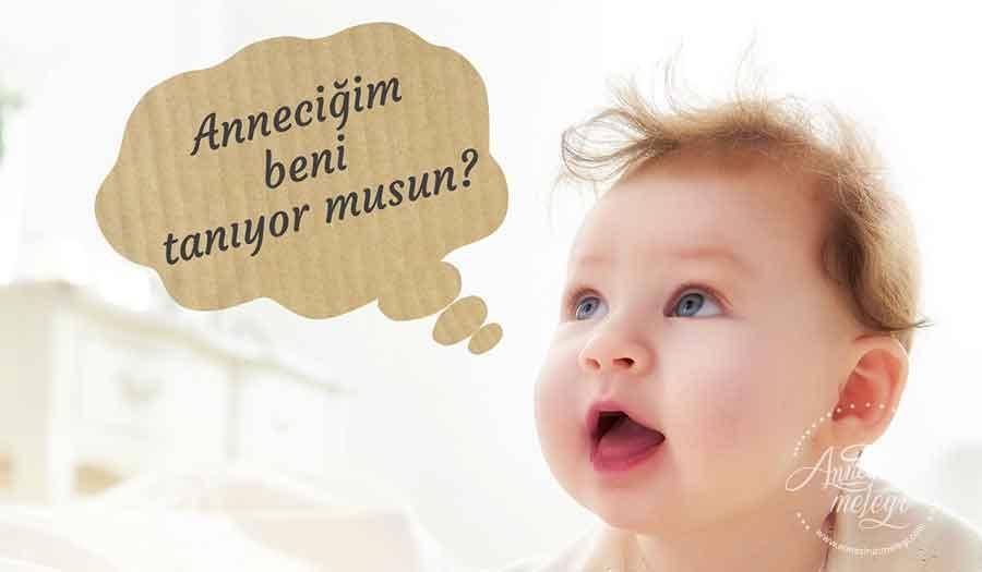 """Kitap Önerisi: İlk 12 ayda bebeğin Gelişimi beslenmesi Oyunları.Bebeğinizin gelişimini takip edebileceğiniz, bebeğinizin ay ay beslenmesi, aşıları, gelişim adımları, bebek yemekleri ve bebek oyunu önerileri ile diş çıkarmadan gaz sancılarına kadar bebeğiniz için aklınıza takılan tüm sorularınıza cevap bulabileceğiniz """"İlk 12 ayda bebeğin gelişimi, beslenmesi, oyunları"""" kitabı Hayykitap yayınevinden çıktı. 0 ay bebek gelişimi, 0 aylık bebek gelişimi yenidoğan, 0 yaş bebek gelişimi, 0-1 bebek gelişimi, 0-1 yaş bebek gelişimi, 0-12 bebek gelişimi, 0-2 yaş bebek gelişimi, 0-3 ay bebek gelişimi, 0-3 bebek gelişimi, 0-6 bebek gelişimi, 1 aylık bebek gelişimi anne karnında, 1 aylık bebek gelişimi uzman tv, 1 haftalık bebek gelişimi, 1 yaş bebek gelişimi, 1 yaş bebek gelişimi boy kilo, 1 yaş bebek gelişimi için oyunlar, 1 yaş bebek gelişimi uzman tv, 1 yaşındaki bebek gelişimi tablosu, 1.ayda bebek gelişimi, 1.ayında bebek gelişimi, 2 aylık bebek gelişimi, 2 aylık bebek gelişimi anne karnında, 2 aylık bebek gelişimi boy kilo, 2 aylık bebek gelişimi uzman tv, 2 haftalık bebek gelişimi, 2 yaş bebek gelişimi, 2 yaş bebek gelişimi boy kilo, 2 yaşinda bebek gelişimi, 2.ayda bebek gelişimi, 2.ayinda bebek gelişimi, 3 aylık bebek gelişimi, 3 aylık bebek gelişimi anne karnında, 3 aylık bebek gelişimi boy kilo, 3 aylık bebek gelişimi için neler yapılmalı, 3 aylık bebek gelişimi için oyuncaklar, 3 aylık bebek gelişimi kadınlar kulübü, 3 aylık bebek gelişimi uzman tv, 3 aylık bebek gelişimi video, 3 haftalık bebek gelişimi, 3 yaş bebek gelişimi, 4 ay bebek gelisimi, 4 aylık bebek gelişimi, 4 aylık bebek gelişimi boy kilo, 4 aylık bebek gelişimi için neler yapılmalı, 4 aylık bebek gelişimi kadınlar kulübü, 4 aylık bebek gelişimi tablosu, 4 aylık bebek gelişimi uzman tv, 4 bebeğin gelişimi, 4 haftalık bebek gelişimi, 4. bebek gelişimi, 4.ayda bebek gelişimi, 5 aylık bebek gelişimi, 5 aylık bebek gelişimi anne karnında, 5 aylık bebek gelişimi için neler yapılmalı, 5 aylık bebek gelişimi """