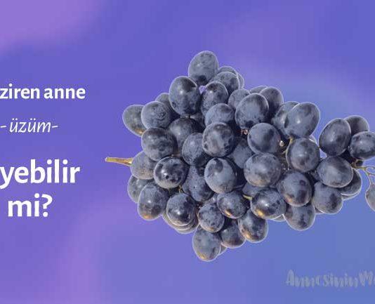 emziren anne üzüm yiyebilirmi, Emzirirken Üzüm Yiyebilir misiniz?